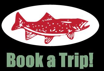 Book a Trip!